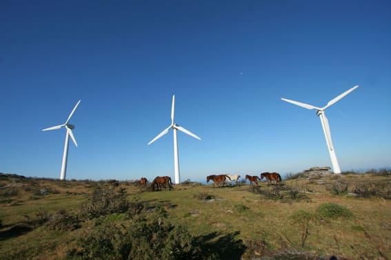 beneficios energias renovables
